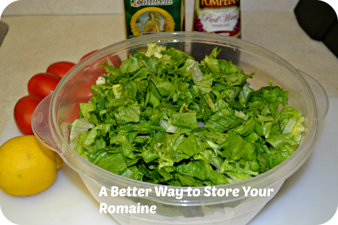 Romaine Lettuce Storage