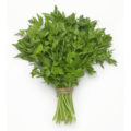 Herbs, including parsley, benefit the body in many ways. These five surprising Health Benefits of Parsley will change your life. Parsley is considered a natural detox remedy that can improve overall health and it adds a snappy flavor to your dishes!