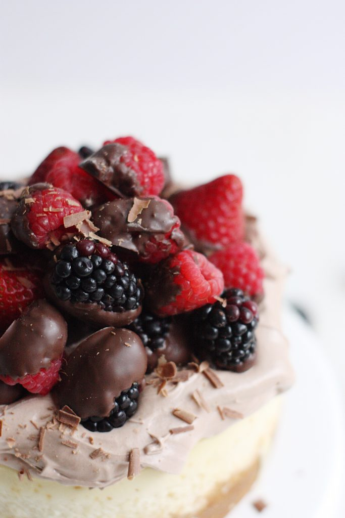 This decadent Chocolate Mousse Mini Cheesecake recipe is the perfect way to celebrate your favorite person this Mother's Day! Topped with festive chocolate-dipped berries, this cake is as beautiful as it is delicious!