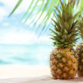 Ever wonder how a Pineapple Grows or its nutritional value? Read all about the jaw-dropping Health Benefits of Pineapple right now!
