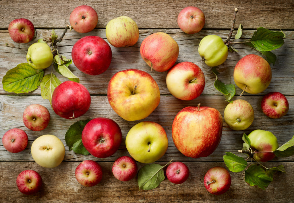 You are going to need this ultimate Definitive Guide to Apples and their uses. We highlight the varieties most common in the United States and the best ways to use them. Everything from baking to canning and eating fresh.