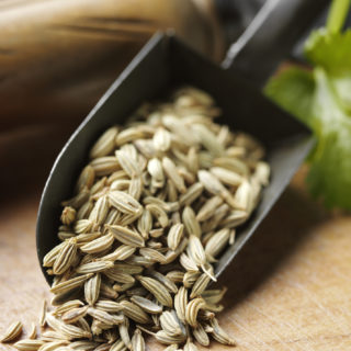 Fennel Seed Weight Loss Water