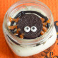 These No-Bake Spider Pudding Pie Jars are a must have for your Halloween Party this year. Of course, they are kid-friendly, but also simple to eat while chatting with other ghosts and goblins at the party. Watch the video and grab the recipe card to make your own!