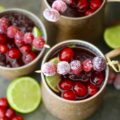 Winter holidays are right around the corner which means it's time to think about entertaining friends and family with refreshing adult beverages like these five festive Cranberry Cocktail Recipes.