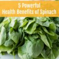Vitamins, fiber, minerals, and more, learn why you need to be reaping the many Health Benefits of Spinach on a daily basis to become a happier, healthier you!