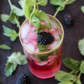 These Blackberry Mint Mojitos are a classic cocktail with a farmers market fresh twist. Skip the $14 happy hour cocktail and entertain friends at home over this refreshingly fruity cocktail recipe.