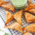 Cheer on your favorite football team with your new favorite tailgating party food, Chipotle Cream Cheese Stuffed Wontons. This 5-ingredient, 30-minute appetizer is so simple to make and will leave party guests begging for more!