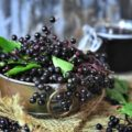 Elderberry health benefits have been on the tip of everyone's tongue for a reason. The berries are loaded with antioxidants and vitamins to boost the immune system. Ease cold and flu symptoms, relieve inflammation, release stress, enjoy heart health, and more with elderberry syrup!