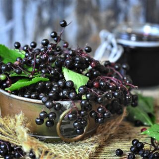 Elderberry Health Benefits + Recipes