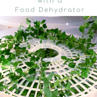 Food Dehydrator: Dry Fresh Herbs