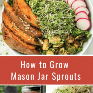 How to Grow Mason Jar Sprouts